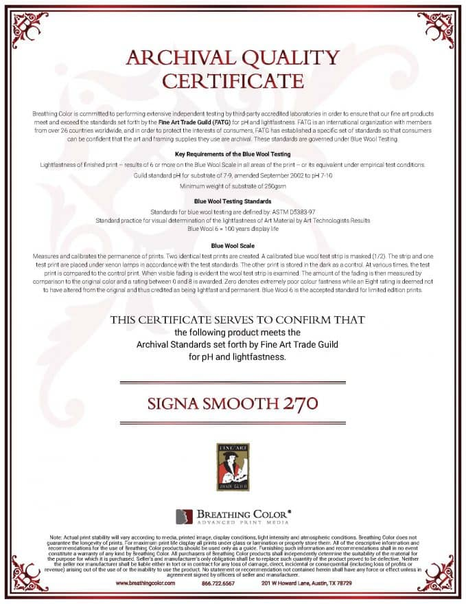 Signa Smooth 270 Archival Certificate